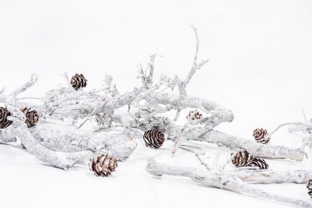 Decorazioni natalizie su bianco.