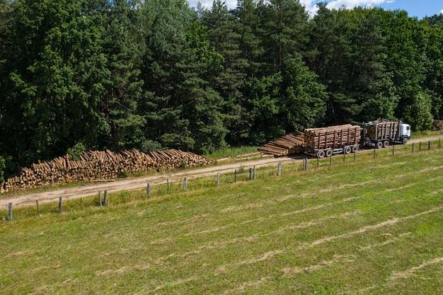 Deforestazione e registrazione vista dall'alto. i camion portano via i tronchi. industria forestale.