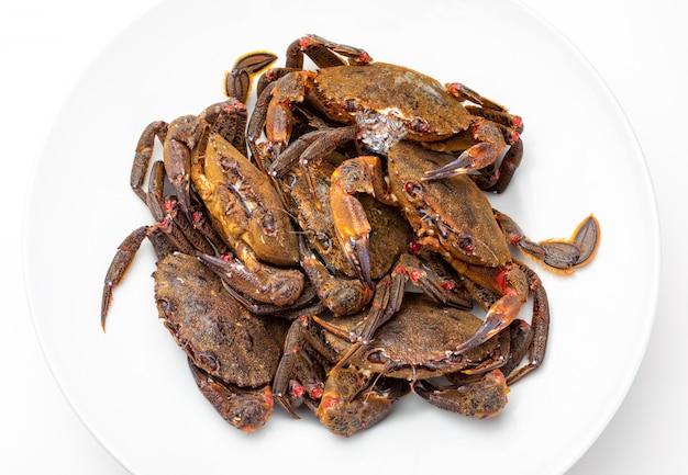 Deliziosi frutti di mare del golfo di biscaglia e dell'atlantico