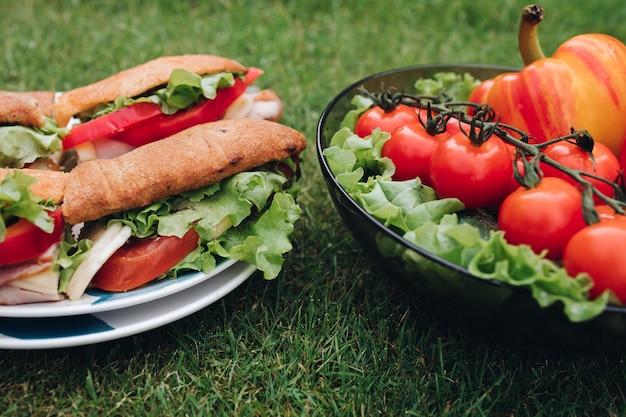 Deliziosi panini con verdure. ciotola di verdure sane di eco sull'erba.