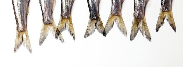 Delizioso pesce fresco su bianco