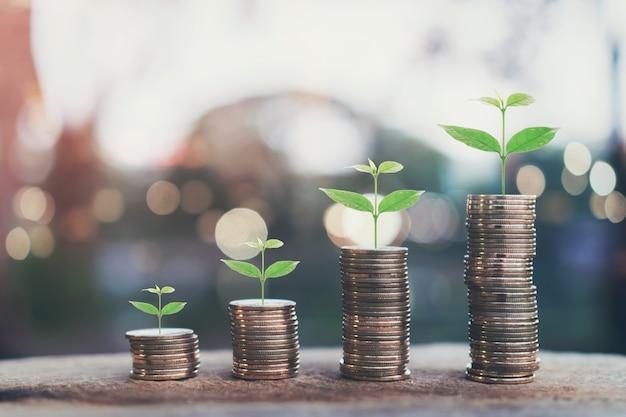 Denaro, pianta sul mucchio di monete in crescita concetto e il successo degli obiettivi finanziari.
