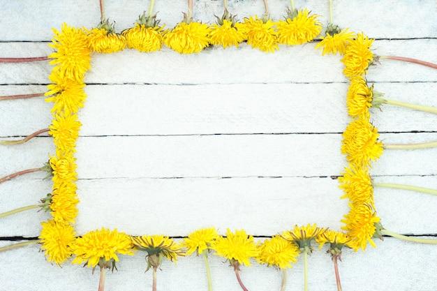 Denti di leone gialli su fondo di legno bianco. fiori selvaggi su vecchio fondo di legno.