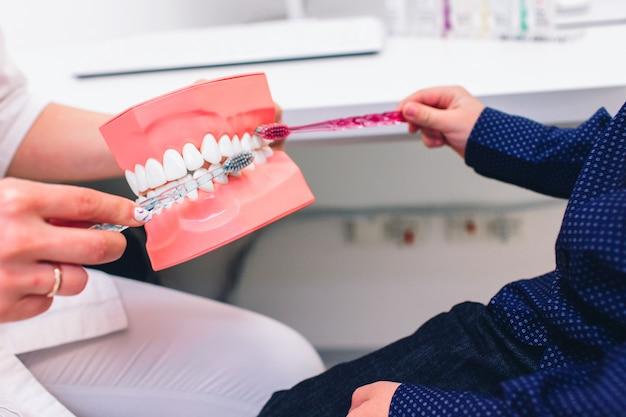 Dentista con guanti che mostra su un modello di mascella come pulire correttamente i denti con lo spazzolino da denti
