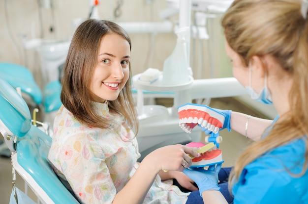 Dentista della donna che mostra modello della mascella dentaria al paziente femminile