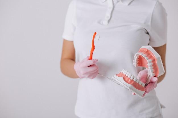 Dentista femminile con gli strumenti di odontoiatria isolati