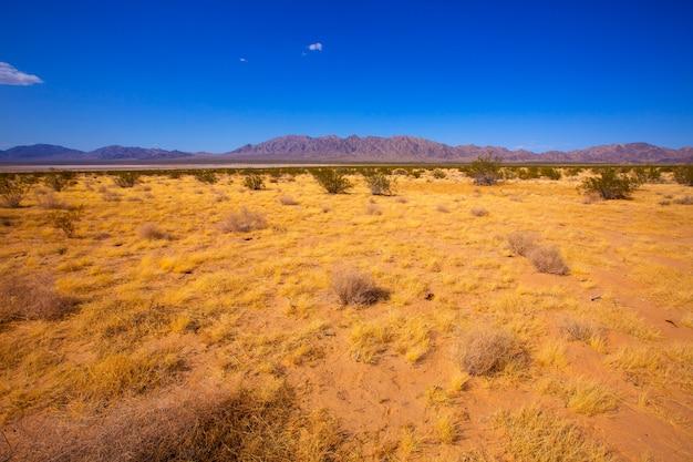 Deserto del mohave in california yucca valley