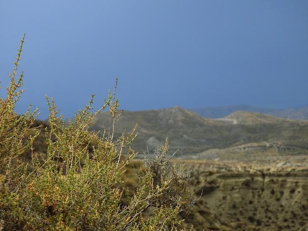 Desierto de tabernas, almeria, españa