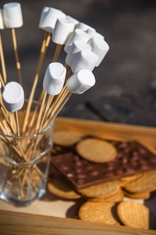 Dessert con marshmallow, cioccolato e cracker dopo un barbecue nel parco