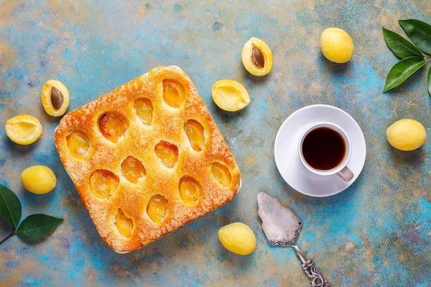 Dessert delizioso casalingo della frutta della torta dell'albicocca di estate