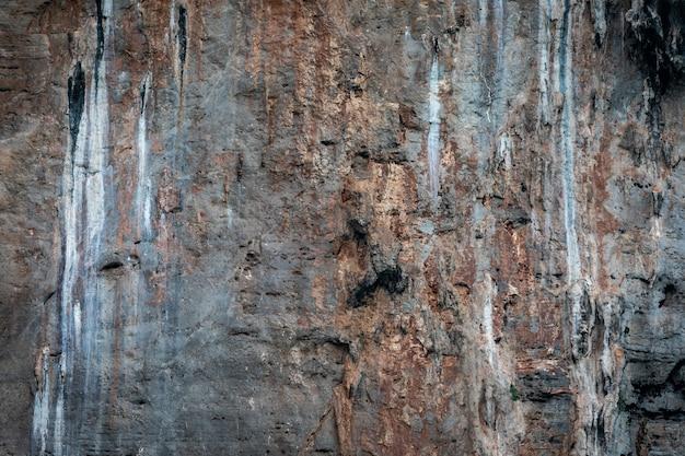 Dettagli di struttura della scogliera della roccia sull'isola della tailandia di kra del mare