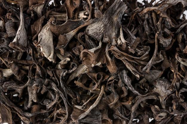 Dettagli di trombe di morte, funghi commestibili