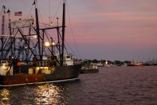 Di pesca della flotta