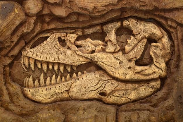 Dinosauro, fossile