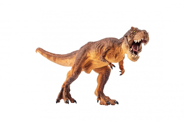 Dinosauro su sfondo bianco