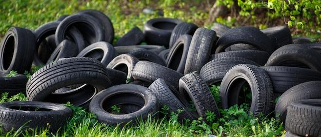 Discarica di vecchi pneumatici usati su erba verde fresca nella foresta.