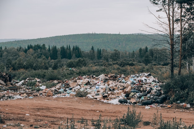 Discarica illegale in mezzo alla foresta e al campo. montagne di immondizia