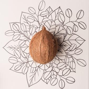 Disegnato a mano floreale del profilo della frutta della noce di cocco