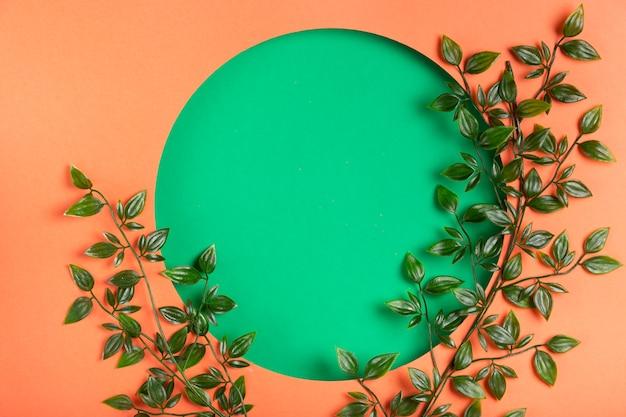 Disegno del cerchio di carta con foglie accanto