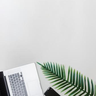 Dispositivi elettronici e foglia verde fresca su sfondo luminoso