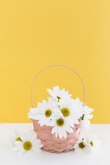 Disposizione con cesto di margherite e parete gialla