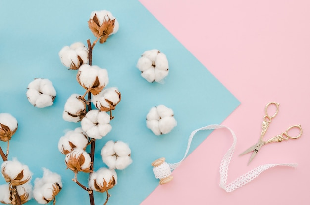 Disposizione con fiori di cotone e forbici