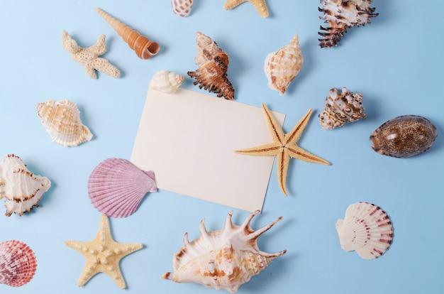 Disposizione creativa fatta di diverse conchiglie colorate e biglietto di auguri