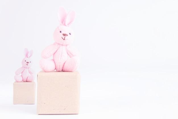 Disposizione dei posti a sedere del coniglio rosa sulla scatola su fondo bianco