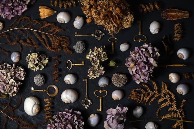 Disposizione di chiavi vintage, fiori secchi, piante e conchiglie