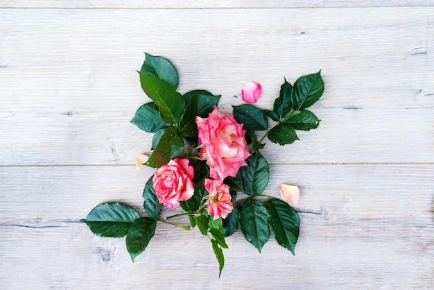 Disposizione di fiori della rosa di rosa isolata su fondo grigio di legno