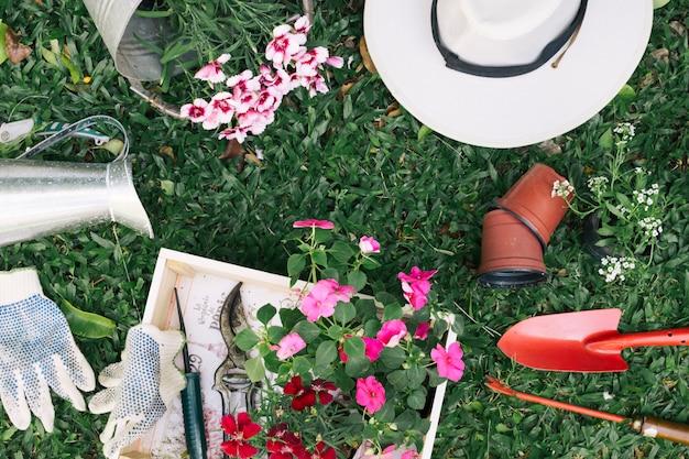 Disposizione di vasi da fiori con strumenti da giardinaggio