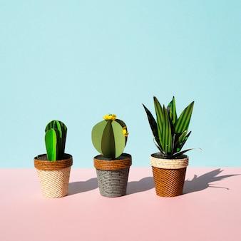 Disposizione di vista frontale di cactus con spazio di copia