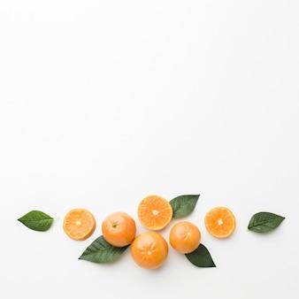 Disposizione piana del concetto di frutti con lo spazio della copia