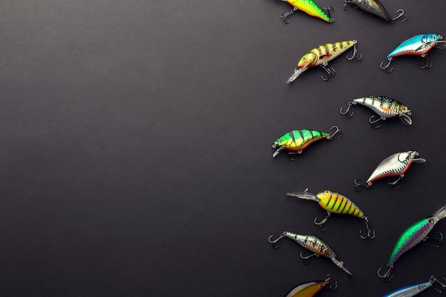Disposizione piana dell'esca variopinta del pesce con lo spazio della copia