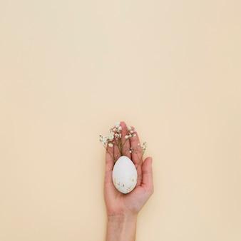 Disposizione piana della mano che tiene l'uovo di pasqua con lo spazio della copia e del gypsophila