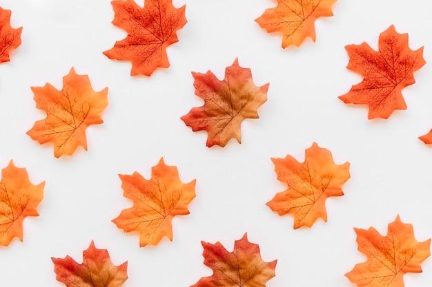 Disposizione piana della struttura delle foglie di autunno