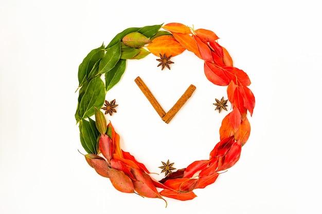 Disposizione piana di caduta di autunno, foglie di autunno di disposizione di vista superiore a forma di orologio su bianco