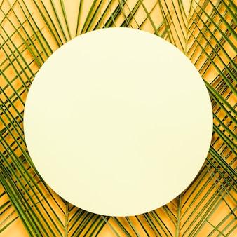 Disposizione piana di carta rotonda sulle foglie