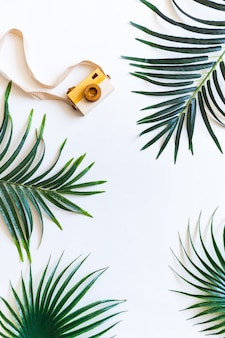 Disposizione piana di foglie di palma e fotocamera