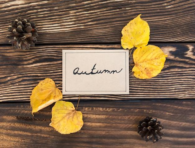 Disposizione piatta con foglie e pigne