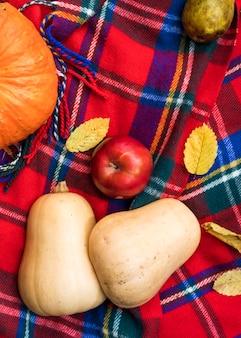 Disposizione piatta con zucche e mela