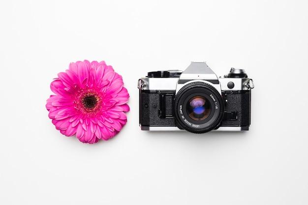 Disposizione piatta della macchina fotografica accanto al fiore