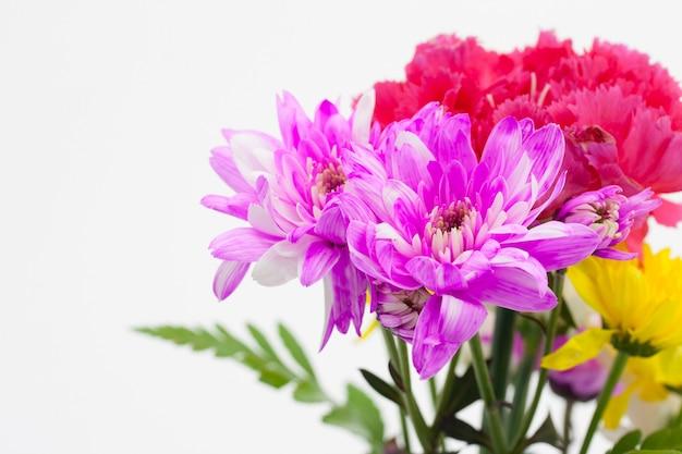 Disposizione variopinta del mazzo del fiore su fondo bianco