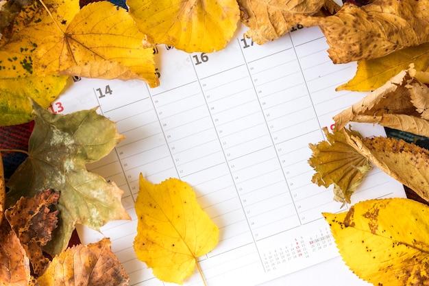 Disposizione vista dall'alto con foglie gialle sul calendario
