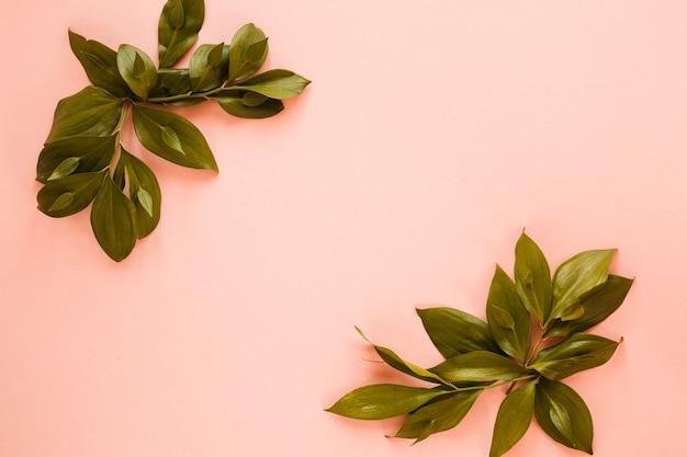 Distesi di foglie con copyspace