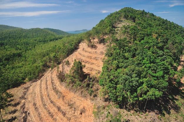 Distruzione della foresta pluviale nella forma della tailandia vista aerea