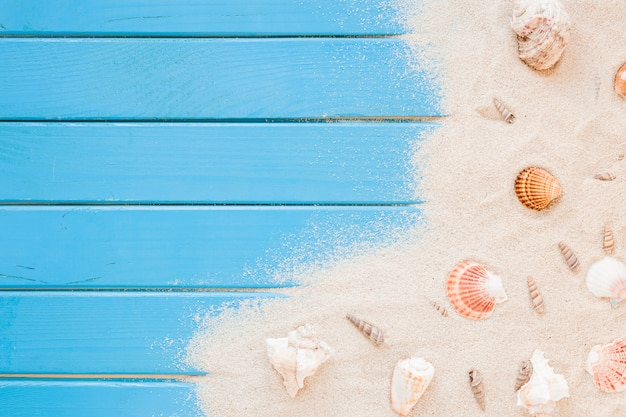 Diverse conchiglie con sabbia sul tavolo