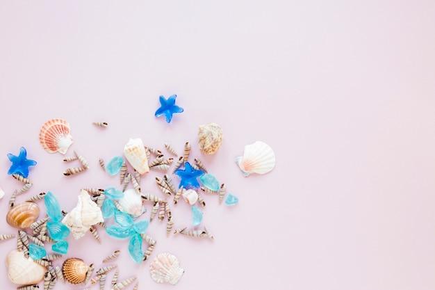 Diverse conchiglie di mare con pietre blu