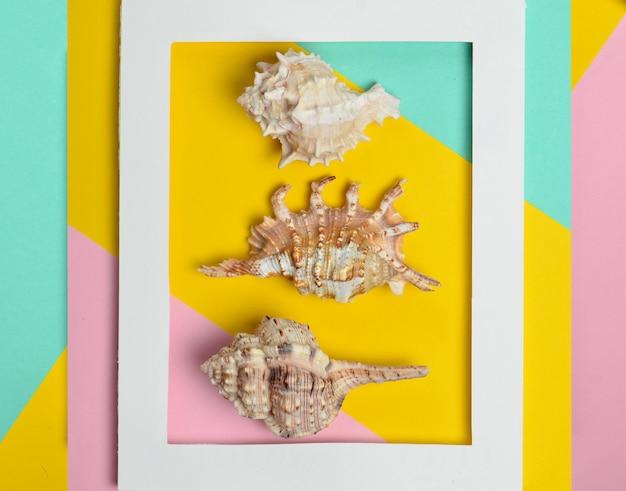 Diverse conchiglie in una cornice rettangolare bianca su uno sfondo colorato pastello