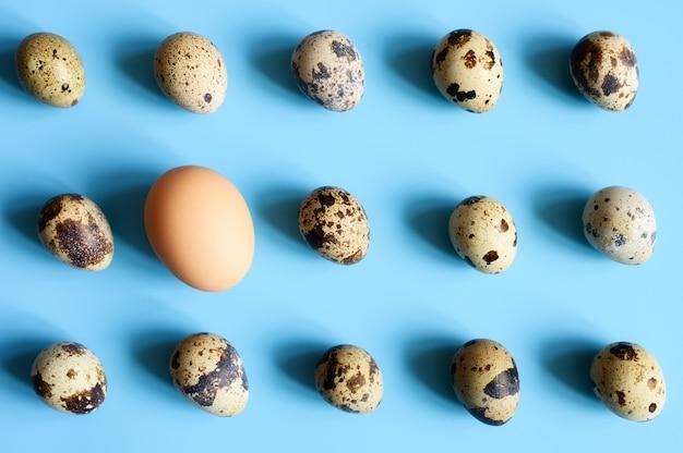Diverse uova di quaglia e un uovo di gallina su uno sfondo blu. uno schema regolare. spazio per il testo